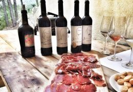 Can Axartel wine