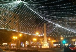 palma christmas lights